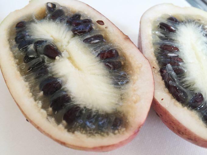 ムベの果実のドアップ