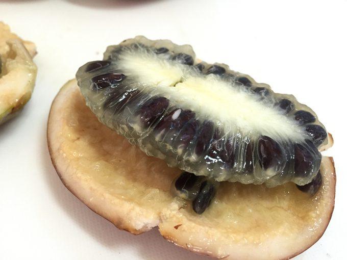 ムベの果実の内側
