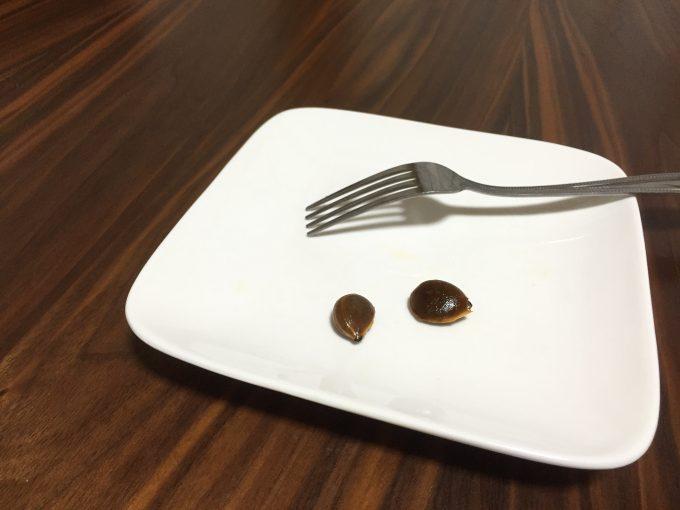 皿にのった2粒の柿の種