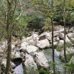 【猪八重渓谷2】宮崎の隠れパワースポット!ジブリ級の大自然を歩く