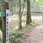 【猪八重渓谷3】森林浴でアンチエイジング!滝がまぁ、超神秘的。