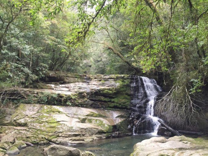 正面から見た岩つぼの滝