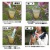 泥水もストローで飲める驚きの性能!川や池の水を飲めるmizu-Q