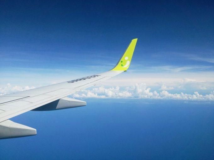 上空の青い空をバックにした、飛行機の羽