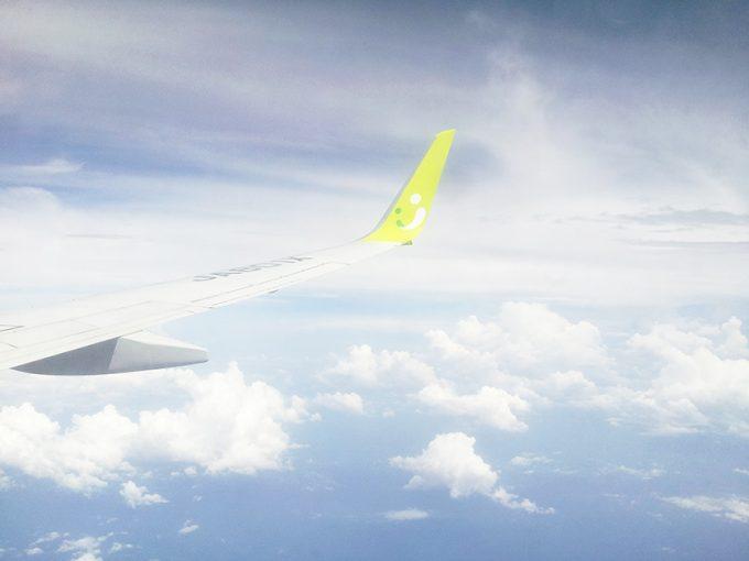 飛行機の中から見る翼と青空