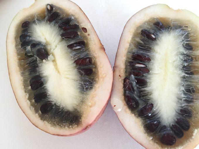 ムベの果実のアップ