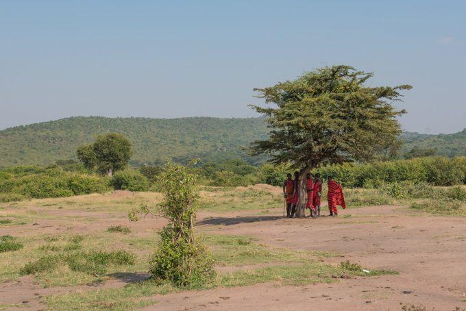 木の下にあつまるマサイ族