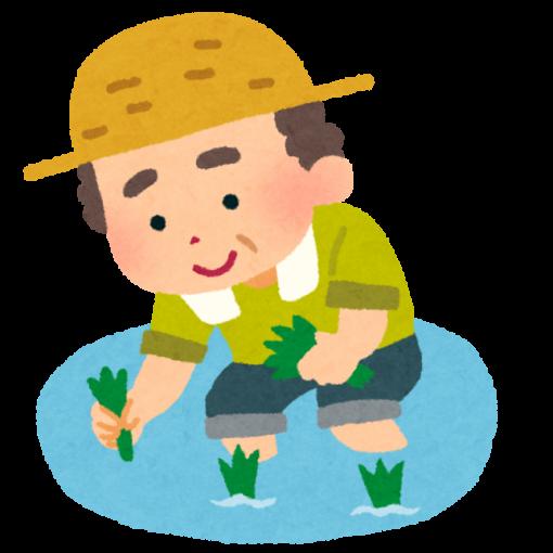 田植えをしているおじさんのイラスト