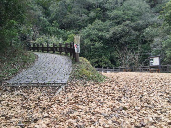 ウッドチップの道から、さらに入る登り坂