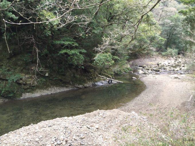 川にせり出した木にかけられたタイヤブランコ