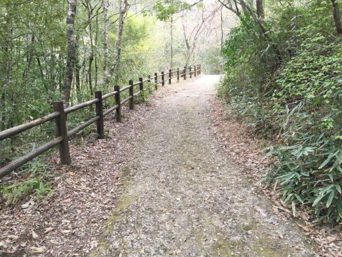 整備された土の遊歩道
