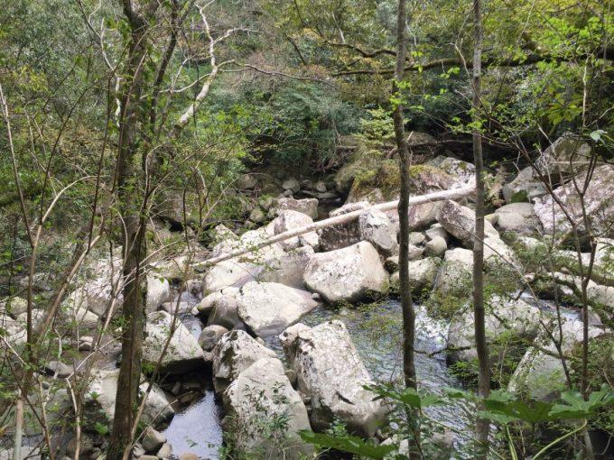 大きな岩にひっかかる、大きな流木