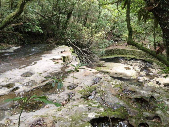 上から見た岩つぼの滝