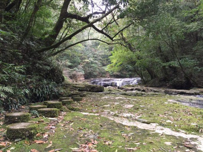 正面(遠方)から見る五重の滝