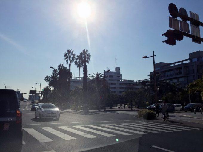 宮崎市役所の全景