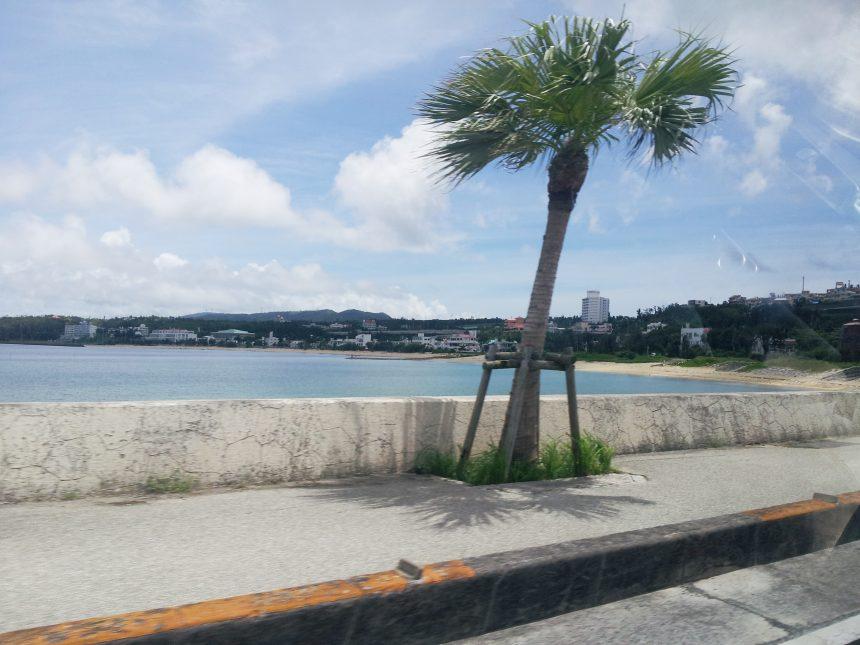 沖縄の海岸線