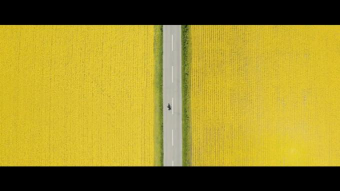 両脇を黄色の菜の花に囲まれた道路を走る一台のバイクを真上から撮影した画像(動画キャプチャ)