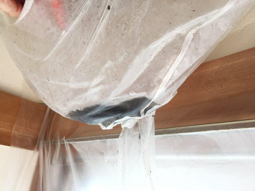 洗浄液でクリーニングすると、真っ黒のドロドロしたカビや汚れがエアコンからでてきた。
