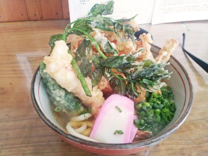 天ぷらうどん。特大ごぼう天にエビ天に山菜天ぷら