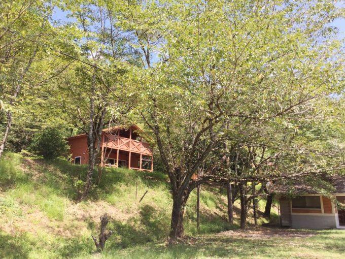 蜂の巣キャンプ場、小さい方のコテージ