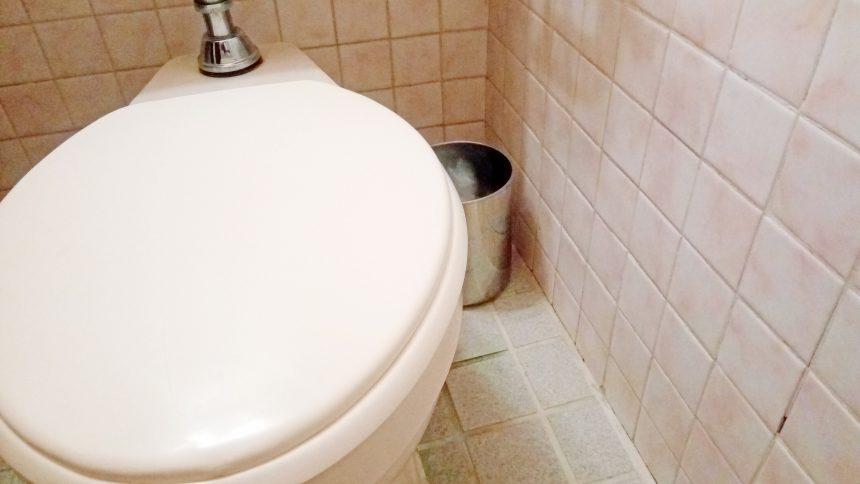 トイレの横にある、トイレットペーパーを入れるためのゴミ箱