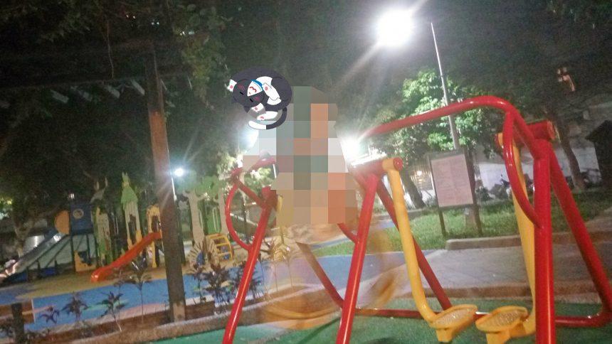 雙城街夜市の公園の運動器具で運動するジャパニーズ(相棒)