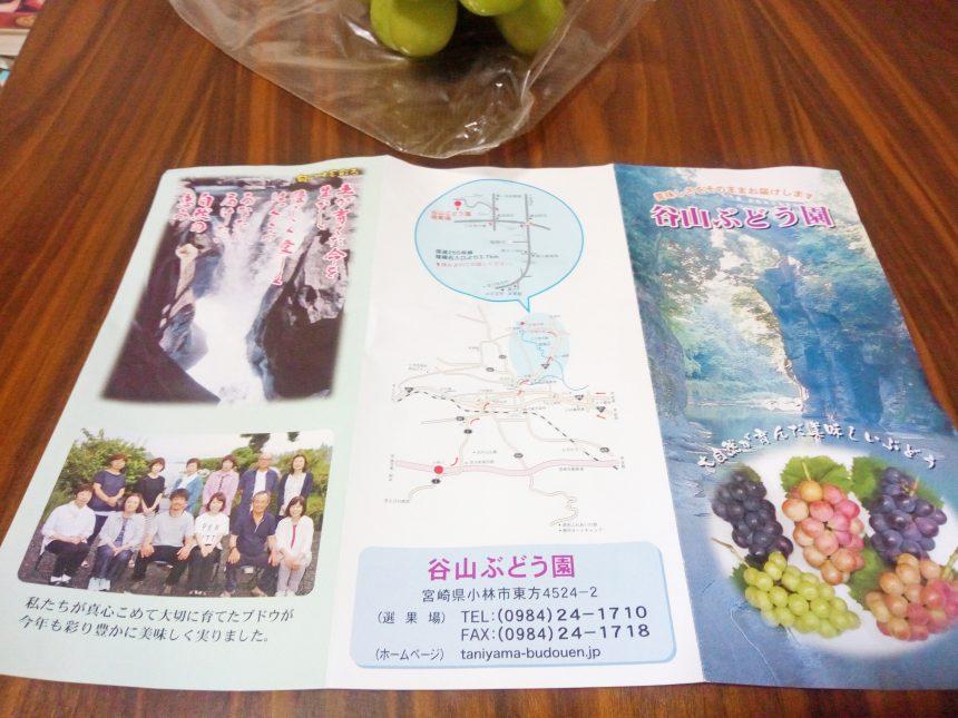 小林市の谷山ブドウ園パンフレット表