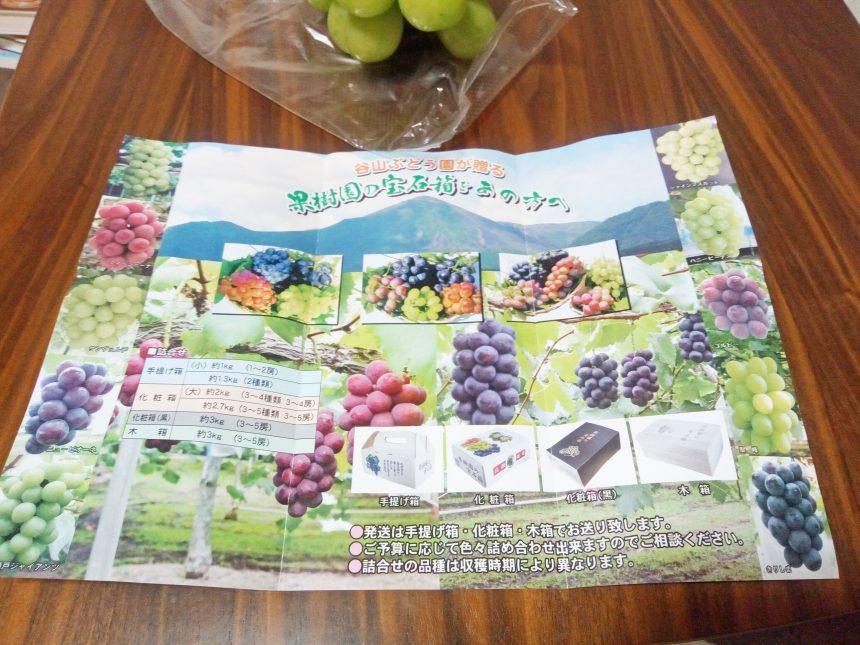 小林市の谷山ブドウ園パンフレット中。通販で買えるブドウの種類がのっている。