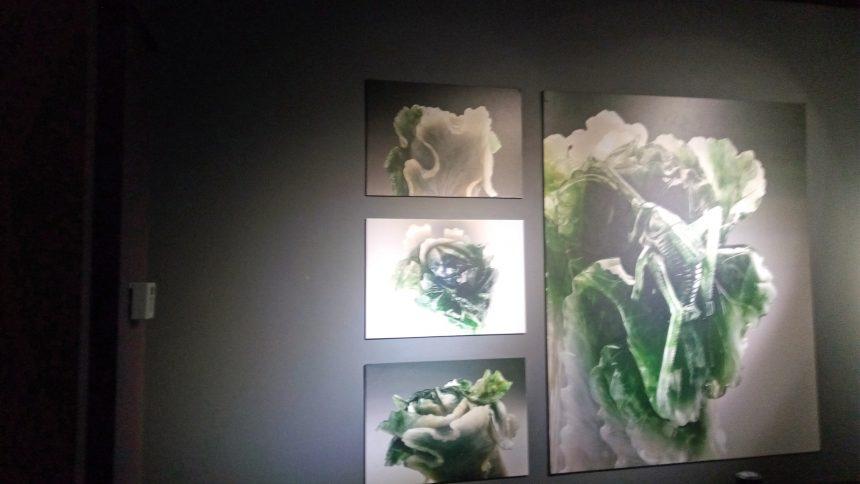 翠玉白菜のパネル