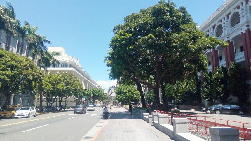 台湾総統府の横の道路の並木道